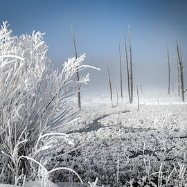 Winter Of Wonderland by Karen Wiles