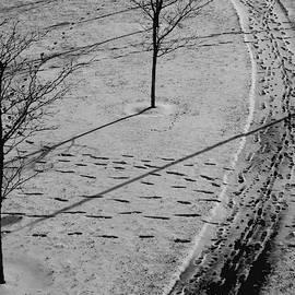Winter Pathways by John Meader