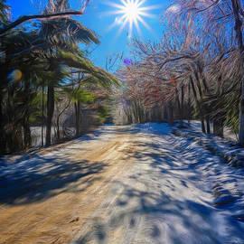 Winter Road by Tom Singleton