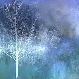 Terry Davis - Winter Tree Blues