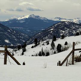 Winter Vista by Marie Leslie