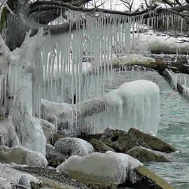 Winter Wonderland by Olga Zavgorodnya