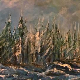 Winter Woods by Edward Theilmann