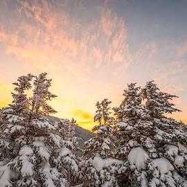 Winter's Last Light, by Jeff Sinon