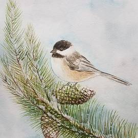 Jane Powell - Wintertime Blackcapped Chickadee