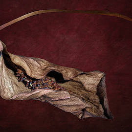 Withered Beauty by Tom Mc Nemar