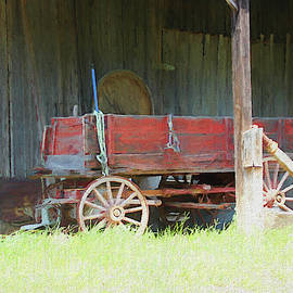 Wooden Wagon 1392 - Painted by Ericamaxine Price