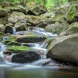 Woodland Waterfall by Toby Luxberg