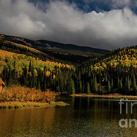 Woods Lake in Autumn by Norma Brandsberg