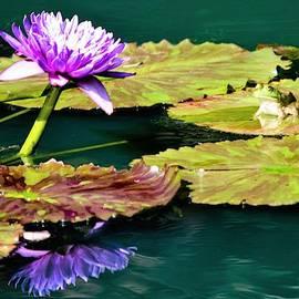 Wow what a cool flower dude by Mary Ann Artz