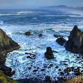 Yaquina bay  Oregon Coast by Charlene Cox
