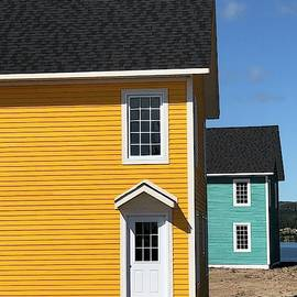 Yellow And Turquoise Trinity Newfoundland  by Mo Barton
