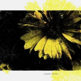 Yellow in My Garden by Lenore Senior