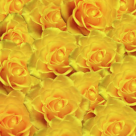 Johanna Hurmerinta - Yellow Roses Art Design