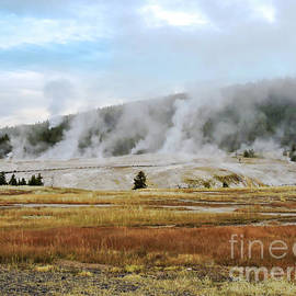 Yellowstone Misty Morning by Norma Brandsberg