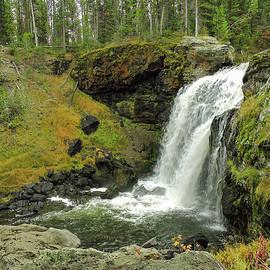 Yellowstone Moose Falls by Norma Brandsberg