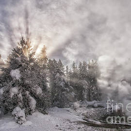 Yellowstone Sun Rays by Priscilla Burgers