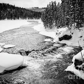Yellowstone Winter Scenery 2 by Timothy Hacker
