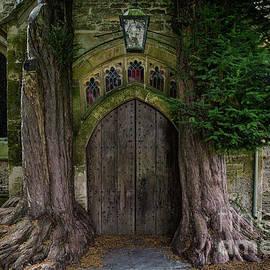Yew Trees by Brian Jannsen