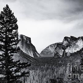 Lisa Lemmons-Powers - Yosemite Tunnel View Black and White