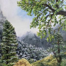 Yosemite Valley Spring Snow by Steph Moraca