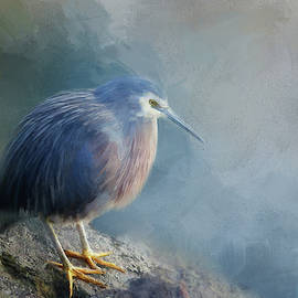 Young Blue Heron Painted by Terry Davis
