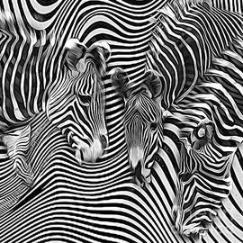 Zebra Stripes Abstract by Brian Tarr