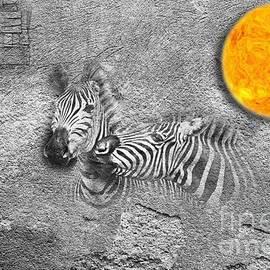 Zebras No 02 by Mia Stedt