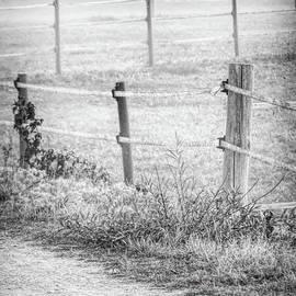 Zigzag Fence by Elisabeth Lucas
