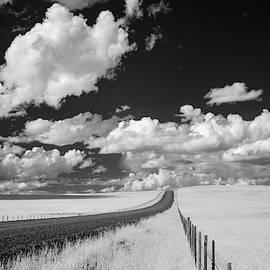 Zumwalt Prairie, Oregon by Adele Buttolph