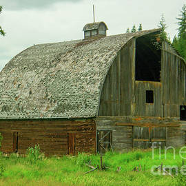 A beauty of an old barn by Jeff Swan