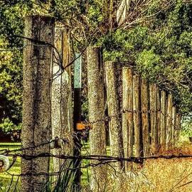 A Fence on a Farm by Curtis Tilleraas