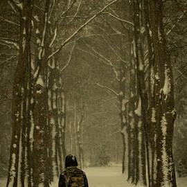 A winter walk by Anita Gendt van