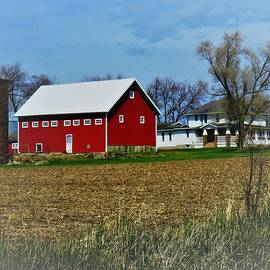 Along the Rural Road  by Lori Frisch