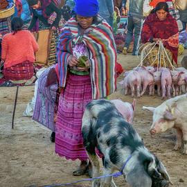 Animal Market 7 by Claude LeTien