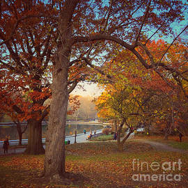 Autumn at the Pond - Central Park New York by Miriam Danar
