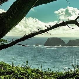 Beautiful View by Beautiful Oregon