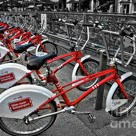 Bicycles by Camelia C