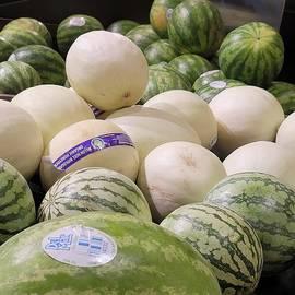 Big Beautiful Melons by Charlotte Gray