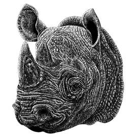 Black rhino animal ink illustration by Loren Dowding