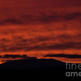 Blaze Orange Sunset by Alana Ranney