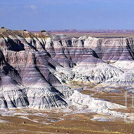 Blue Mesa Vista by Douglas Taylor