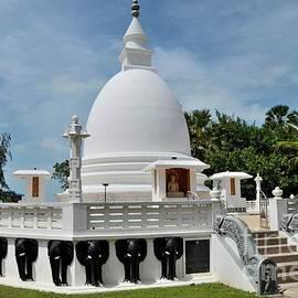Buddhist stupa with Buddha statue at the Dambakola Patuna Sangamitta Temple complex Jaffna Sri Lanka by Imran Ahmed