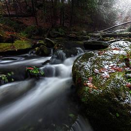 Change of Seasons by Bill Wakeley
