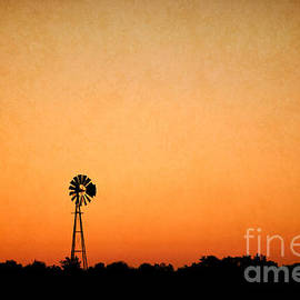 Deep in the Heart of Texas by Gary Richards