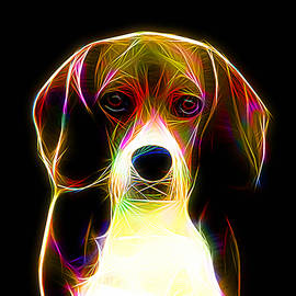 English Beagle by Alexey Bazhan