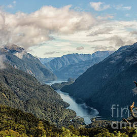 Entrance of Doubtful Sound by Patricia Hofmeester