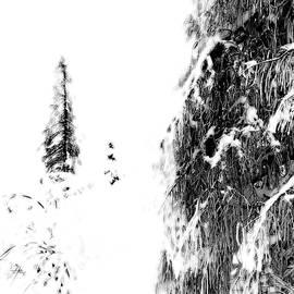 Fresh Snow by Imi Koetz