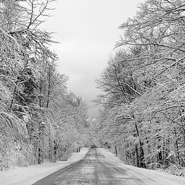 Traveling Through the Fresh Snow by David T Wilkinson