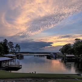 Goose Rejoice Sunrise by Ed Williams